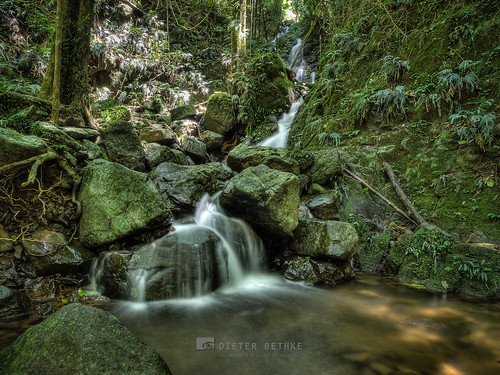 aus australia australien crystalshowerfalls dorrigo dorrigonationalpark nsw newsouthwales oz rainforest regenwald