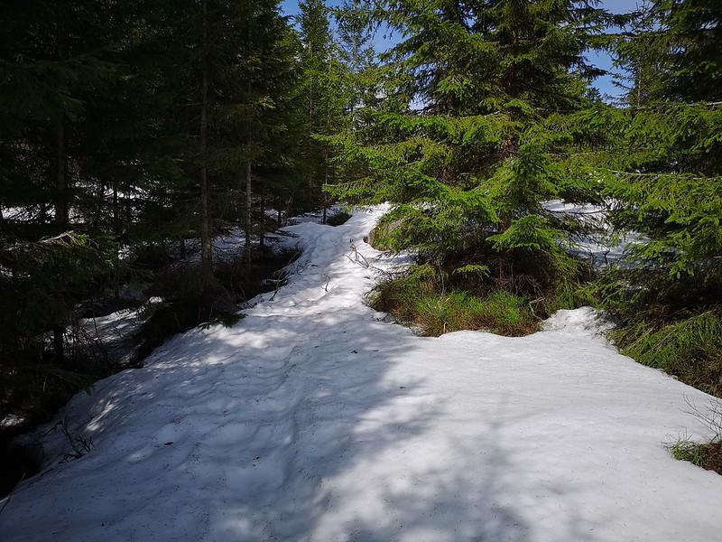 02-Snø på vei mot toppen