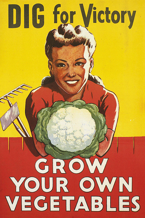 dig-for-victory-grow-your-own-vegetables