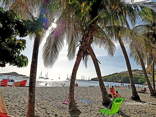 carribeanlifestyle reflets carribeanbeach placetobe placetovisit pigeon water sea gwada trip guadeloupe sunnysky beach sunset guadeloupeforever vacation placetosee travel sunnyday photography carribeancolours