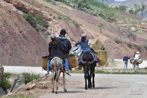 Pista de Rouadi al Peñón de Vélez de la Gomera