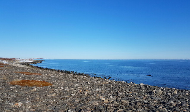 Seaside walk with dog, Ekkeroey in the horizon