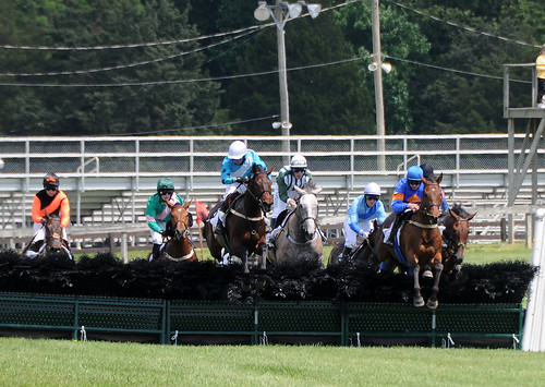 Photo of horses clearing hurdle at Fair Hill steeplechase