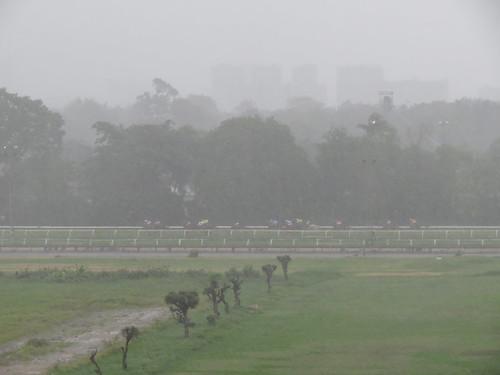豪雨の中で行われた4レース