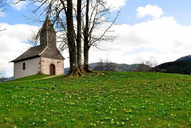 Longemer (Vosges )