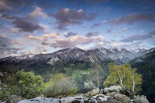 bouleau conflent coucherdusoleil montagne neige parcnaturelrégionaldespyrénéescatalanes paysage pic printemps pyrénéesorientales sommet valléedelatêt nuage sunset vert