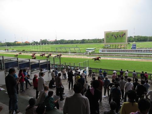 タイ競馬の直線走路