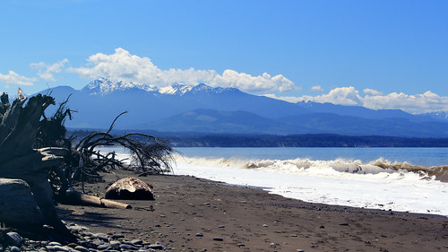summer waves driftwood mountains beach ocean landscape uswa coast shore pacificocean pugetsound