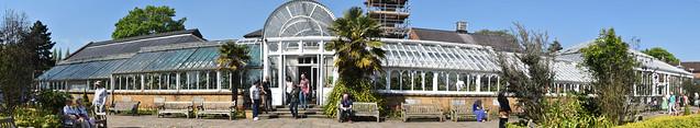 The grand glasshouse, Birmingham Botanical Garden.