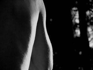 body IV