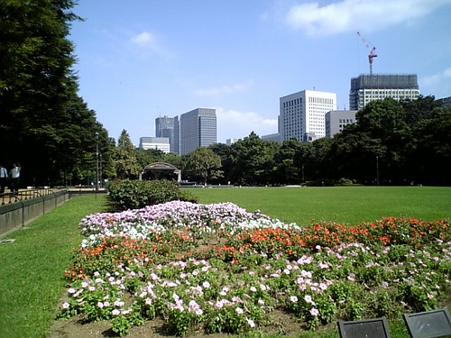 Flowers in the Hibiya Park(日比谷公園) | by kawanet