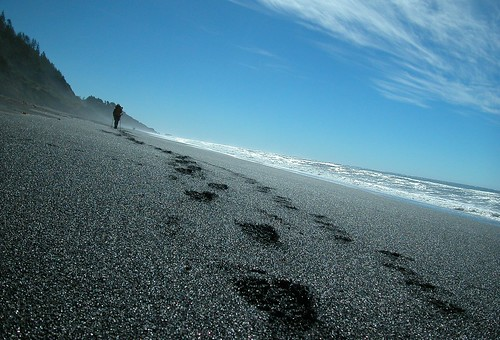 Footprints on the Black Sand Beach | by fitzmanly