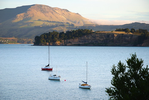 quail island harbour dfa28105f3556 pentax pentaxk1