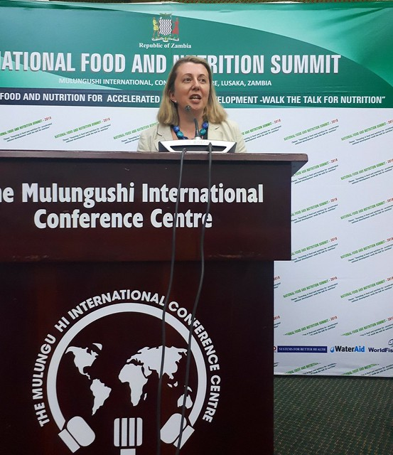 Zambia  Global Panel attends the National Food & Nutrition Summit