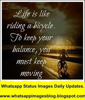 Best Whatsapp Status Ever Whatsapp Status Best Whatsapp S