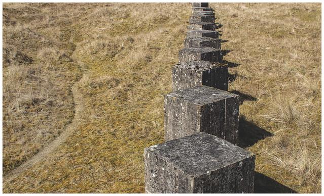 Sea Defences - Patterns, Tentsmuir