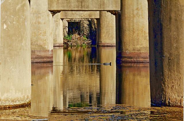 Bridge Pylons - Underside