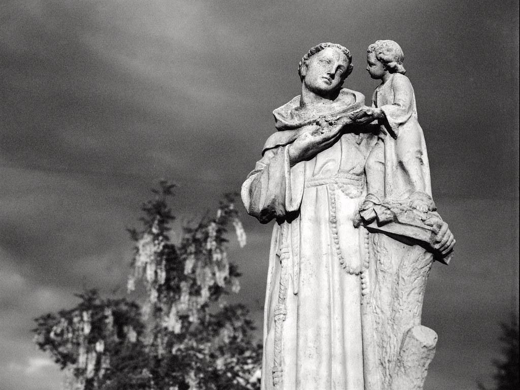 Święty Antoni / St. Anthony of Padua