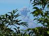 Výhled na kouřící Fuego ze svahu sopky Pacaya, foto: Petr Nejedlý