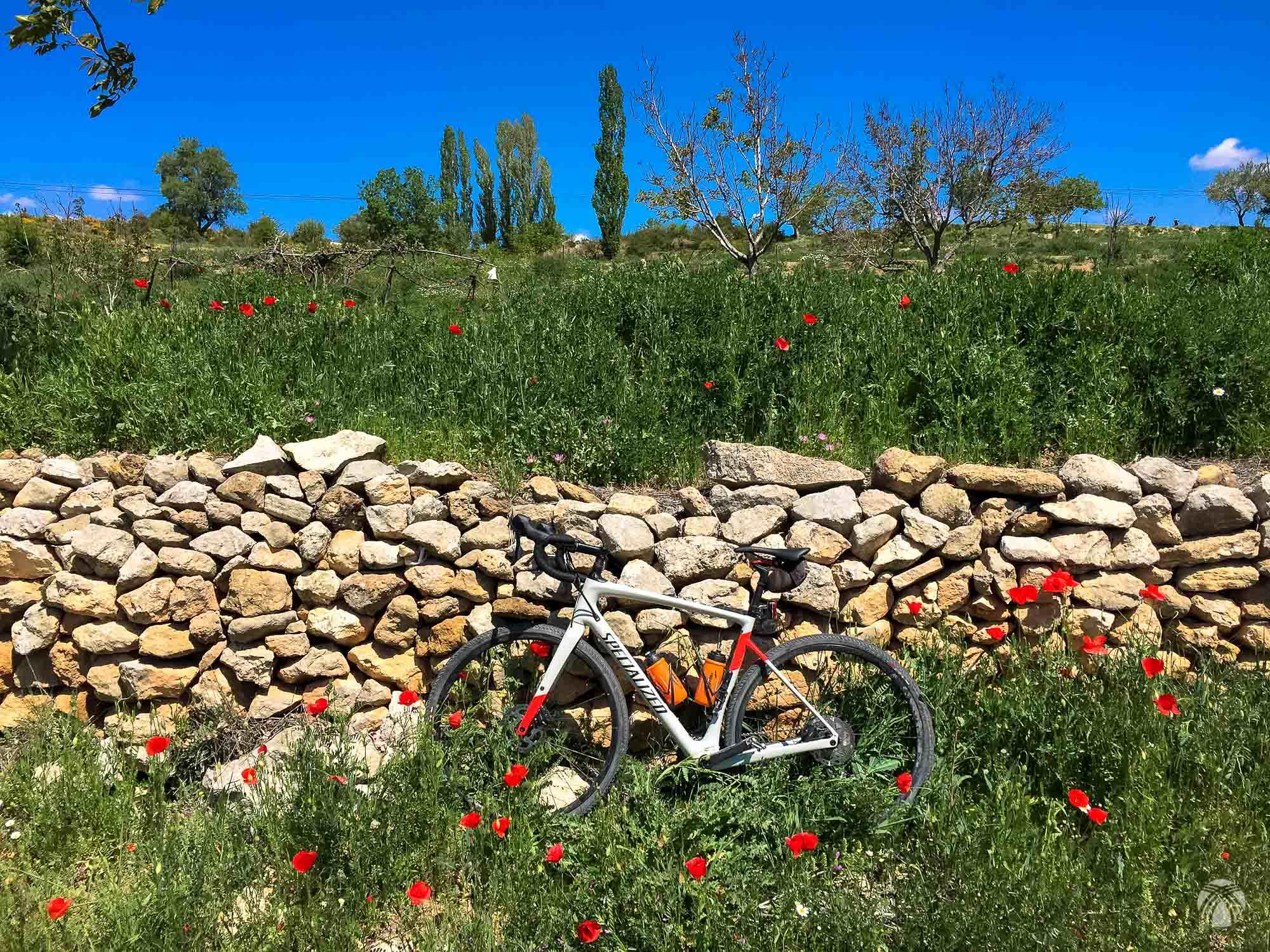 La primavera en Segura