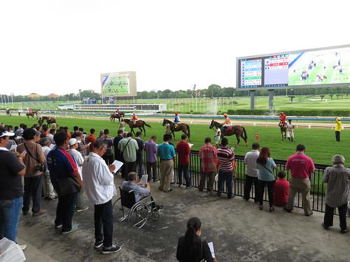 タイ競馬のパドックで予想する人々