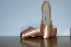 Elvira Pointe Shoes