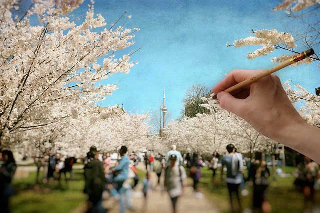 Painting Spring Delights of Sakura Time