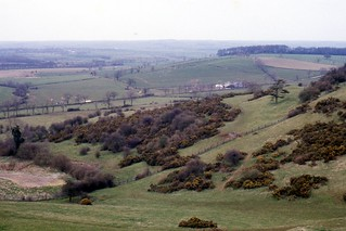 Borrough hill