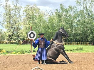 Lázár Equestrian Park in Domonyvölgy Hungary | by corsi photo