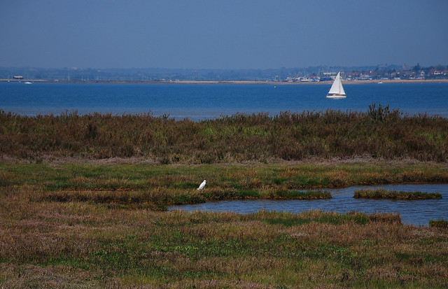 Blackwater Estuary from Bradwell-on-Sea towards Mersea Island