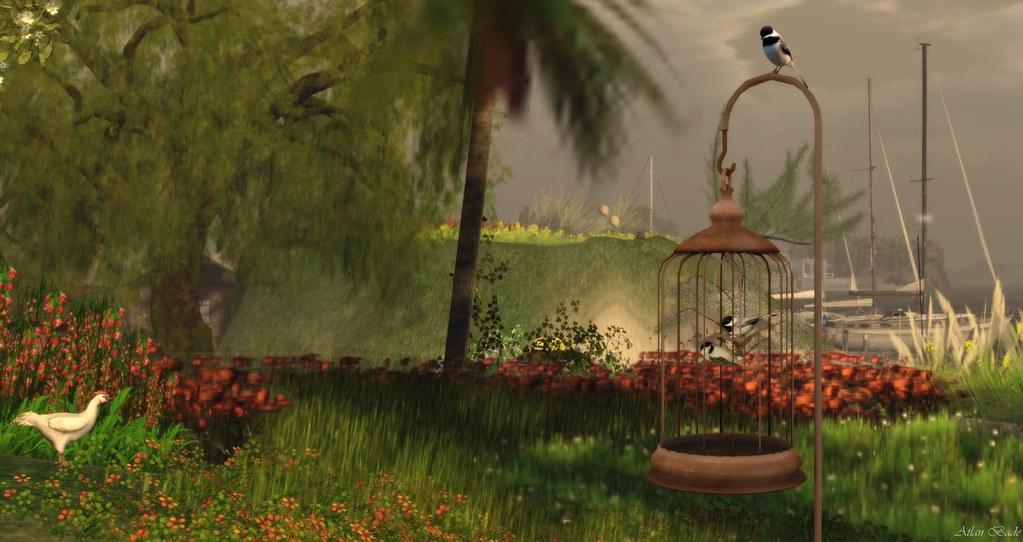 Arkon - Free Bird
