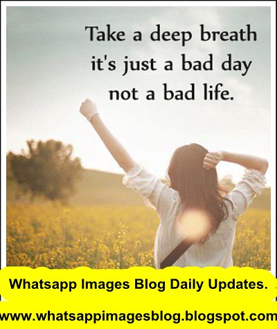 whatsapp dp picture free download