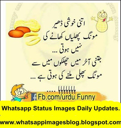 Best New Funny Whatsapp Status Cool Status Best New Funn