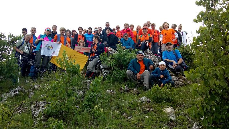 Vrh Vis na 873 m/nv