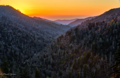 landscape landscapemountain smokymountains spring sunset tennessee trees