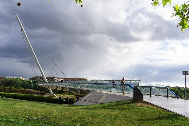 Ribera del Ebro 81