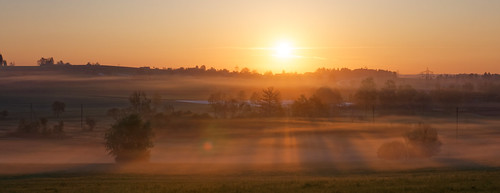 cloud fog trees fields sun sunrise sunlight rays morning katzensee zurich switzerland