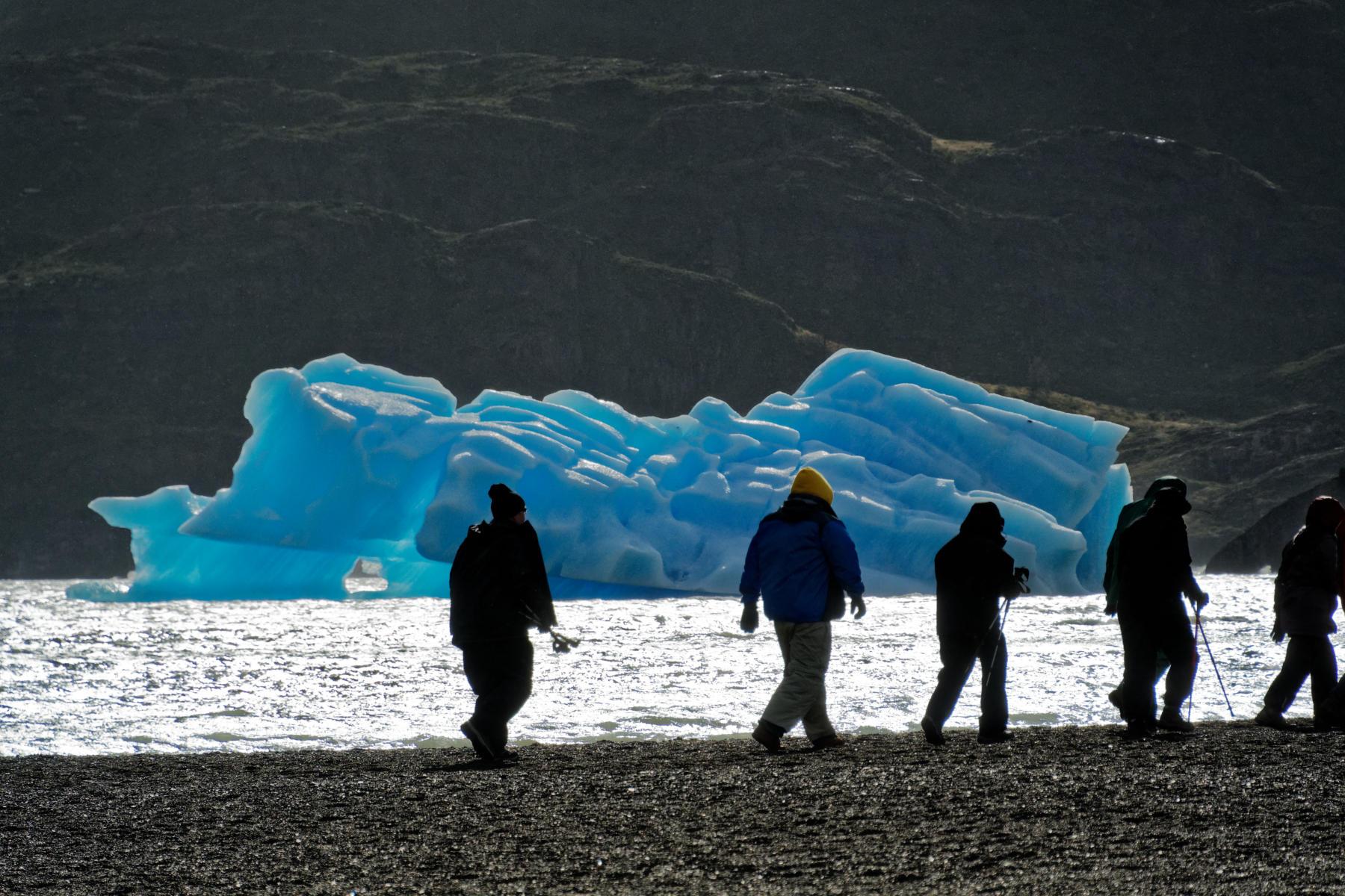 Glacier in the Grey Lake