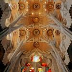 Sagrada Familia Church Ceiling