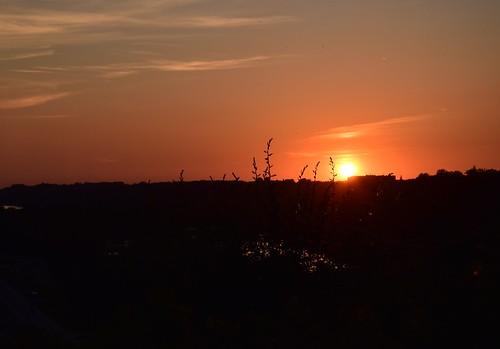 sunset silhouette nature dusk sunrisedawn backlit sky landscape sun outdoors sunlight orangecolor dawn scenics morning beautyinnature summer yellow twilight zachódsłońca natura polska poland lato przestrzeń czerń piękno beauty niebo słońce minimalism nikon nikond5300 d5300