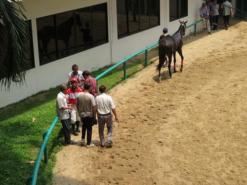 ロイヤルターフクラブ競馬場の装鞍所で談笑する騎手