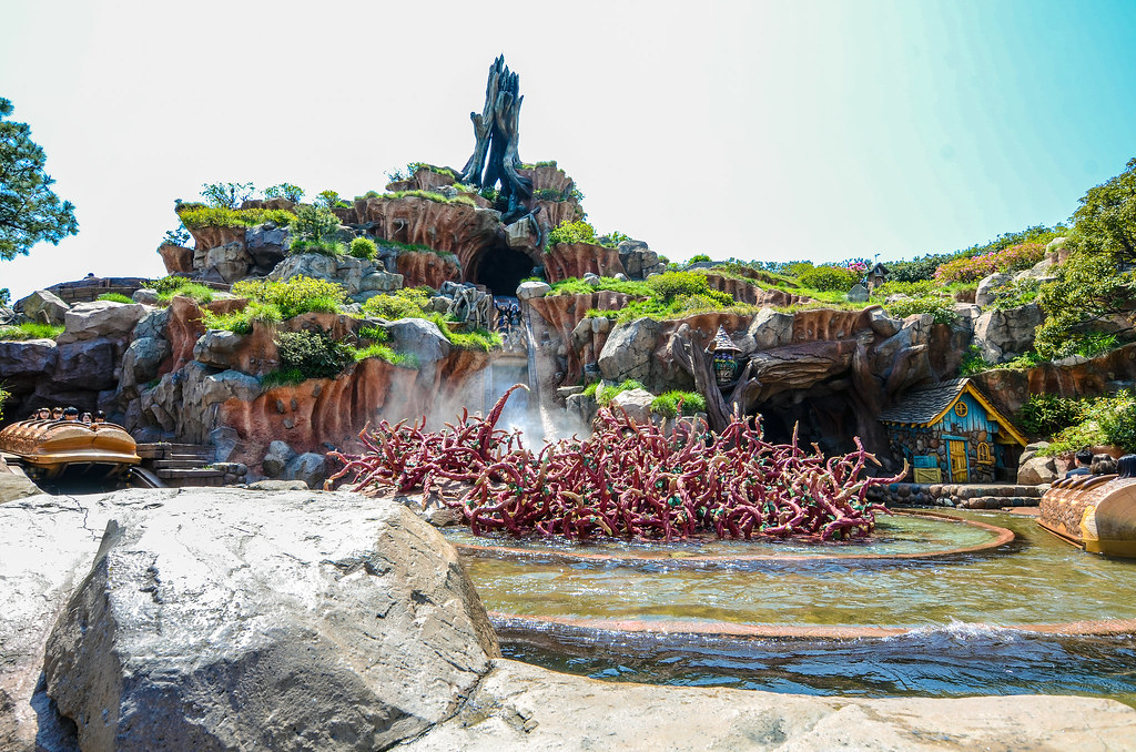 Splash Mountain rafts TDL