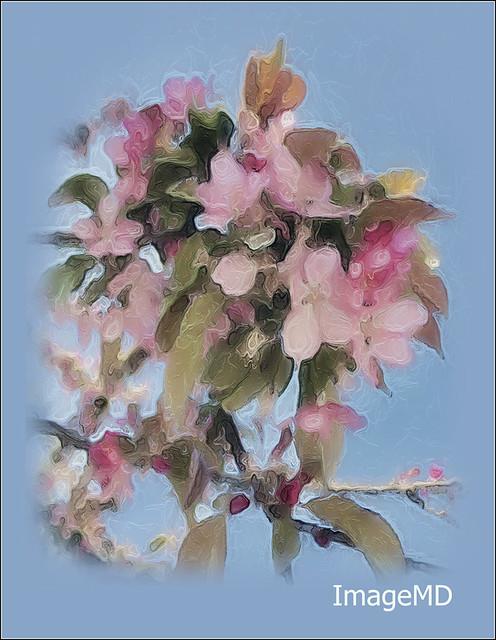 Springtime A2