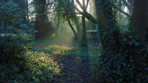 file14 graveyard sunrise hull city of cuture