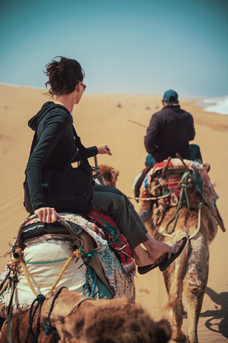 Riding Camels | by RC PoP Art