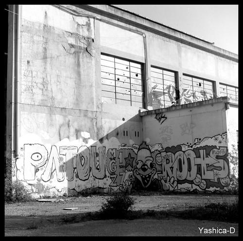 Yashica-002.bmp   by Bokey Shutter