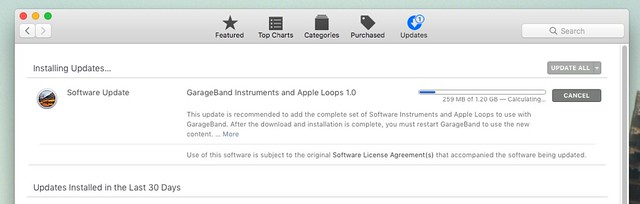 Apple App Store Bug