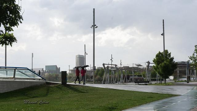 Ribera del Ebro 80