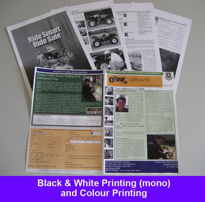 uq thesis cloth colour