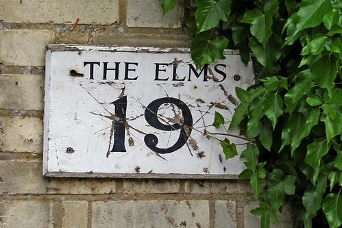THE ELMS 19 | by Leo Reynolds